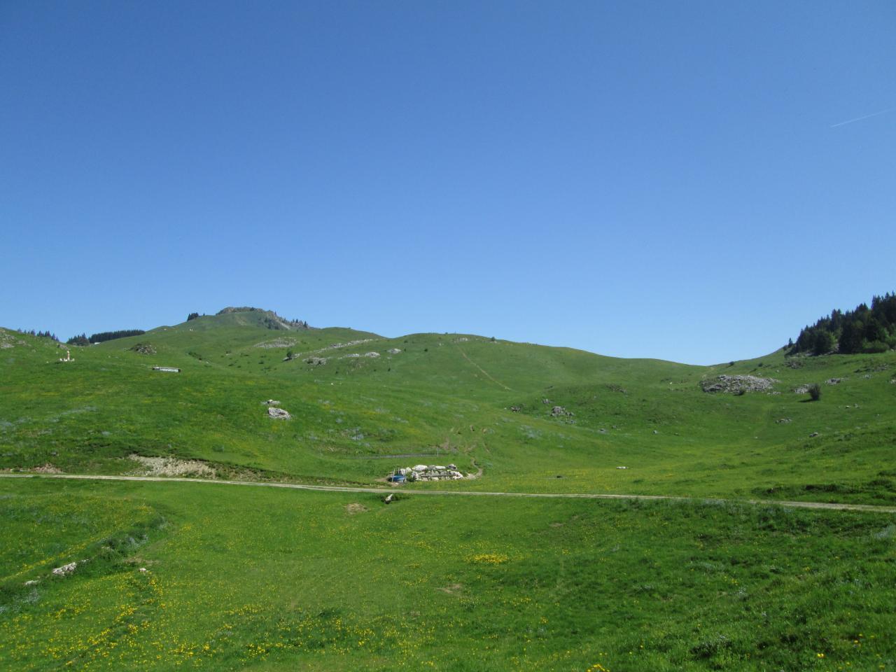 4.Plateau de Plaine Joux