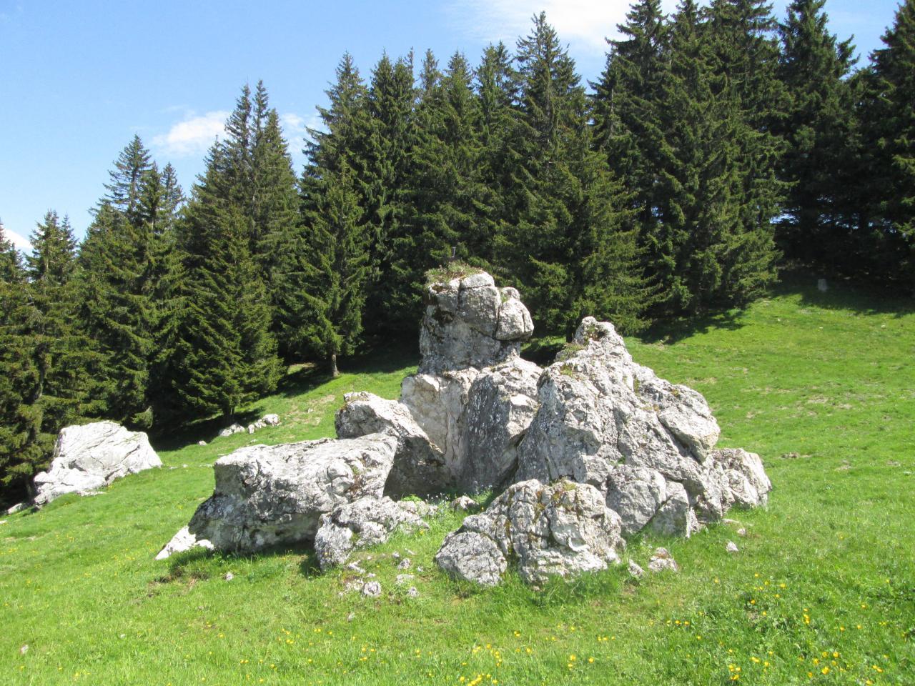 48.Alpage de la Joux (4)